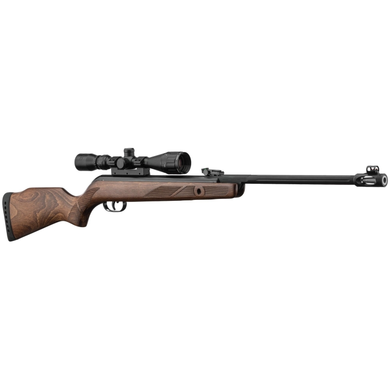 Carabine Gamo Hunter 440 AS + lunette 3-9X40 wr (20 joules)
